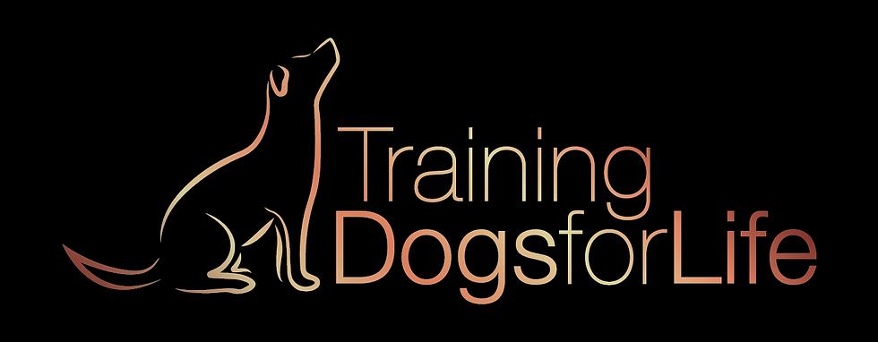 TDFL Logo Master Rose Gold-01.png