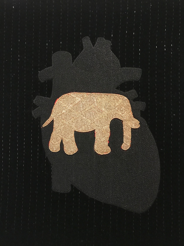 The Golden Elephant in a Dark Room