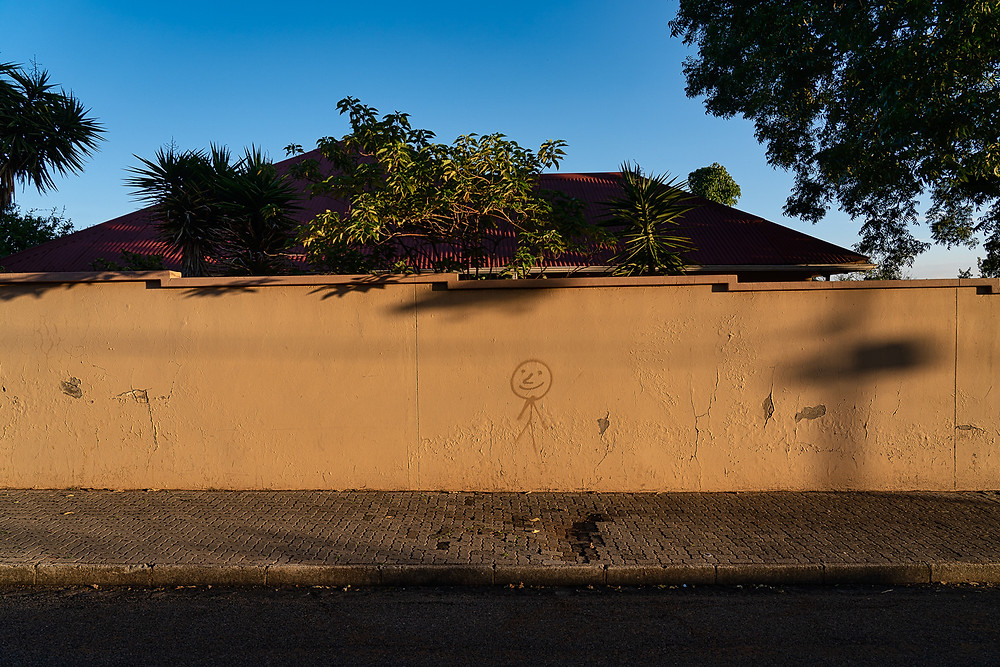 Images from a daily dog walk through the Johannesburg suburb of Kensington