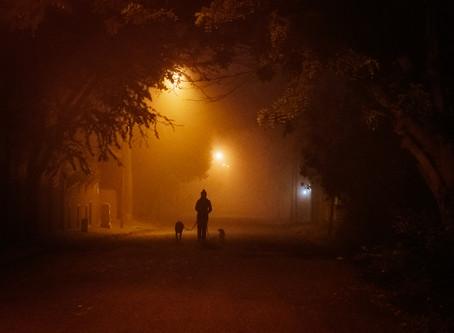 Dog walking 6. Dark and cold.
