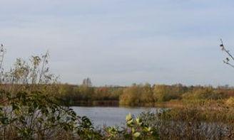 Stanwick Lakes.jpg