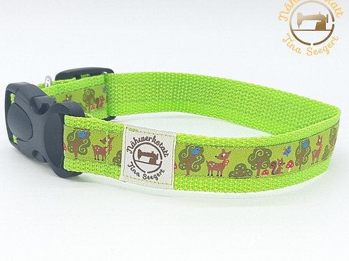 Hundehalsband grün