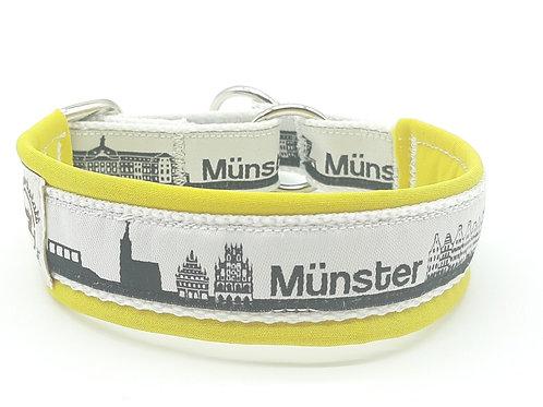 Münster sieht gelb - Zugstopphalsband