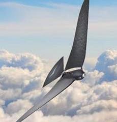 Bionic Bird : le drone du futur bat des ailes