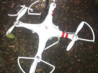 Ivre, il perd le contrôle de son drone qui s'écrase dans le jardin de la Maison Blanche
