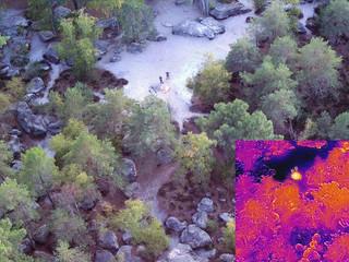 Fontainebleau. La forêt sous surveillance aérienne pour lutter contre les incendies