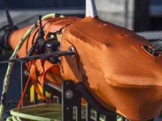 La Marine américaine crée un robot-requin pour la bataille navale