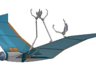Ce drone s'inspire des capacités de la chauve-souris pour se déplacer