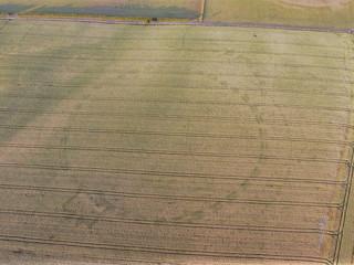 Royaume-Uni : la sécheresse fait émerger des vestiges archéologiques encore inconnus !