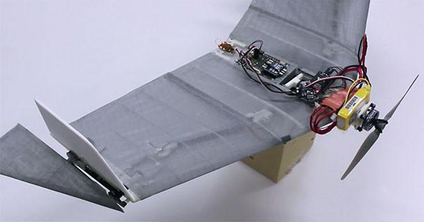 robot-drone-daler-epfljpg.jpg
