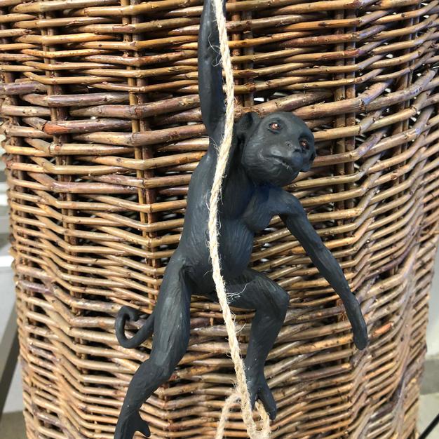 Klatrende apekatt henger