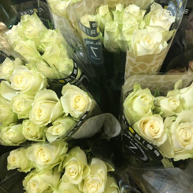 Roser hvite