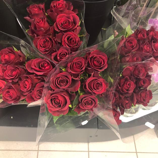 Roser dyprød