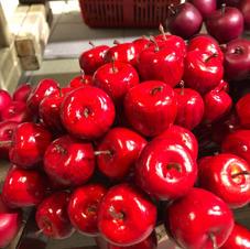Epler på ståltråd
