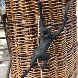 Klatrende apekatt strekker seg