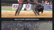 Le Pay-per-view au Sénégal, notre User Experience (UX)