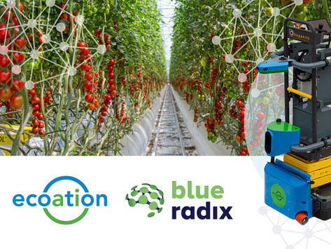 Blue Radix & ecoation Join Forces With The World's 1st Autonomous Find & Fix Solution