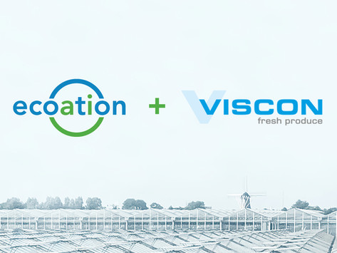 Ecoation and Viscon Announce Collaboration to Enhance Automation and AI in Horticulture