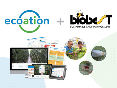 Biobest & ecoation Join Forces to Drive AI-Optimized IPM in the European Market