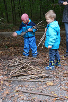 Holz sammeln und sortieren