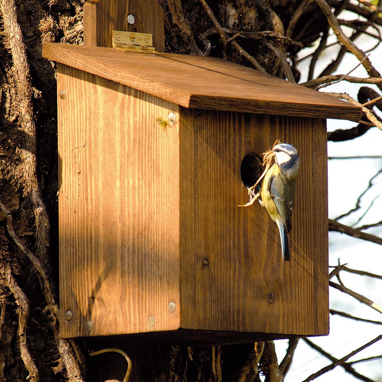 Special 'homes for wildlife' event