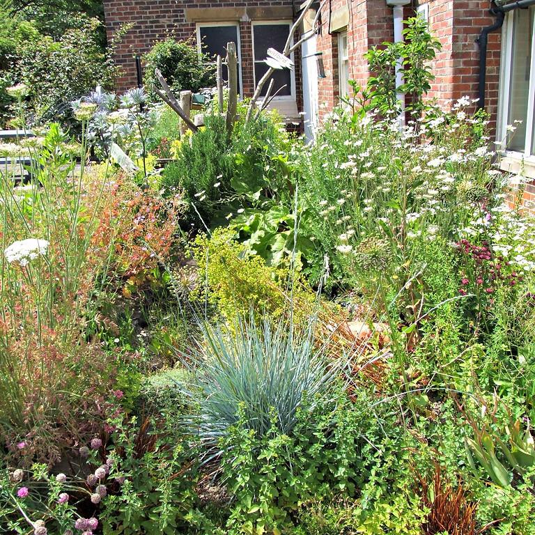 CANCELLED 'Rewilding' your garden / WAGA 2020