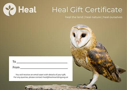 Heal Gift Certificate - Barn owl.jpg