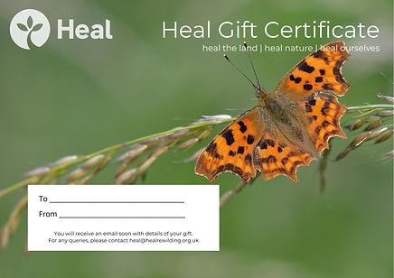 Heal Gift Certificate - Comma.jpg