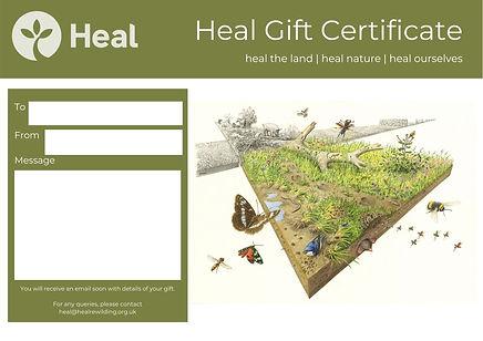 Heal Gift Certificate - Heal 3x3 illustr