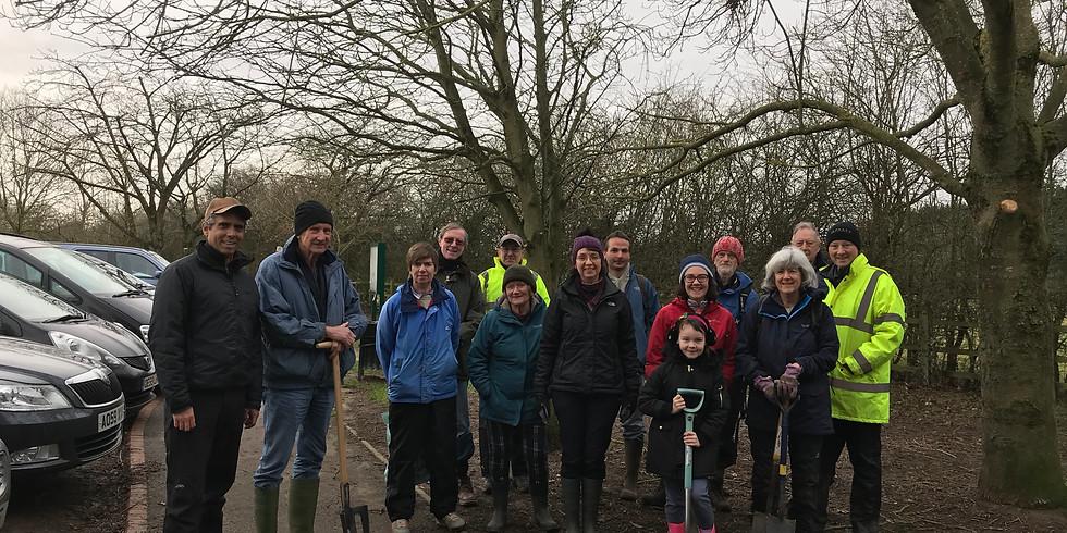 Tree planting work parties
