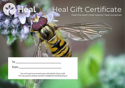 Heal Gift Certificate - Marmalade hoverf