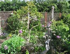 Wild garden.jpg