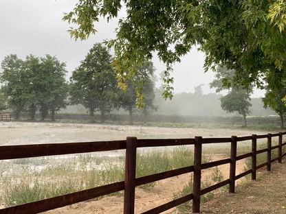 Equilibre des sols à la chaux au Haras des Sablonnets. Non il ne neige pas !