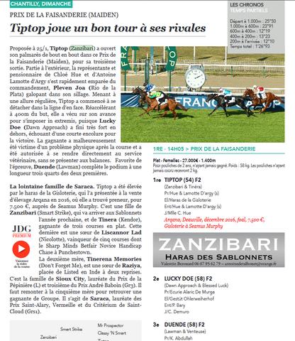 Article de Jour de Galop sur la victoire de Tiptop au Prix de la Faisanderie (Maiden) à Chantilly di