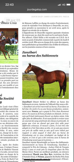 article zanzibari