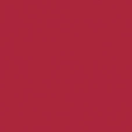 CAPICUA RED