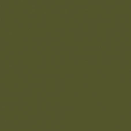 CAMUFLAGE GREEN