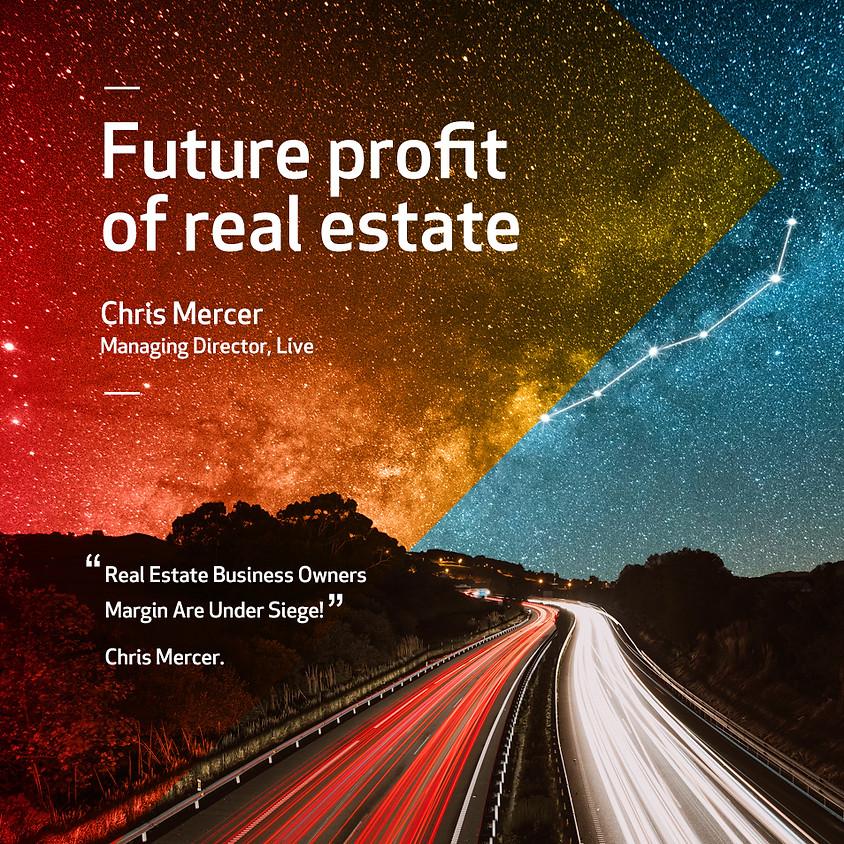 Future Profit of Real Estate - Postponed