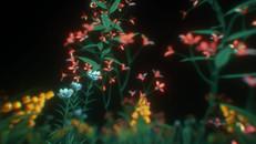 180117_FlowerFly_i2_1.mp4