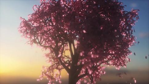 180325_TreesLeaves_v002.mp4