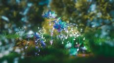 180722_Flower_0002edit.jpg