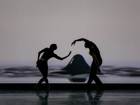 Компания Jessica Lang Dance в финале DanceInversion