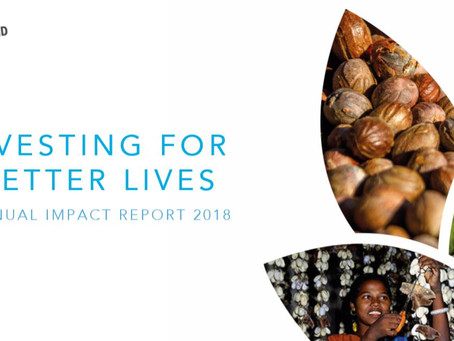 OUR ANNUAL IMPACT REPORT 2018