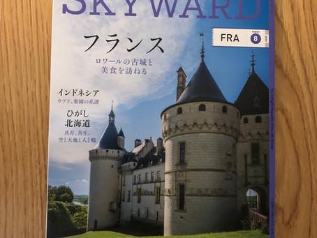 挿絵のお仕事〈SKYWARD8月号〉