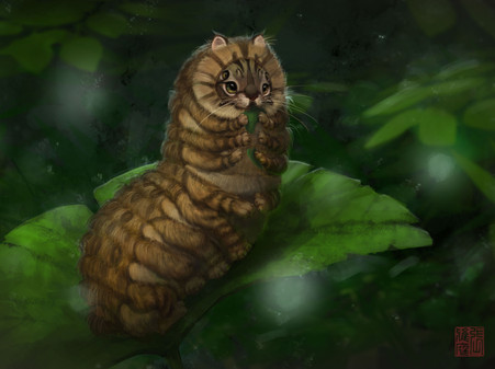 Bobtail Caterpillar
