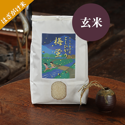 【はざがけ米|玄米】南魚沼産コシヒカリ「梅蛍」3キロ