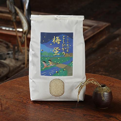 【精米】南魚沼産コシヒカリ「梅蛍」3キロ