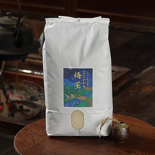 【精米】南魚沼産コシヒカリ「梅蛍」10キロ