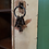 Thumbnail: Estate cupboard in pine