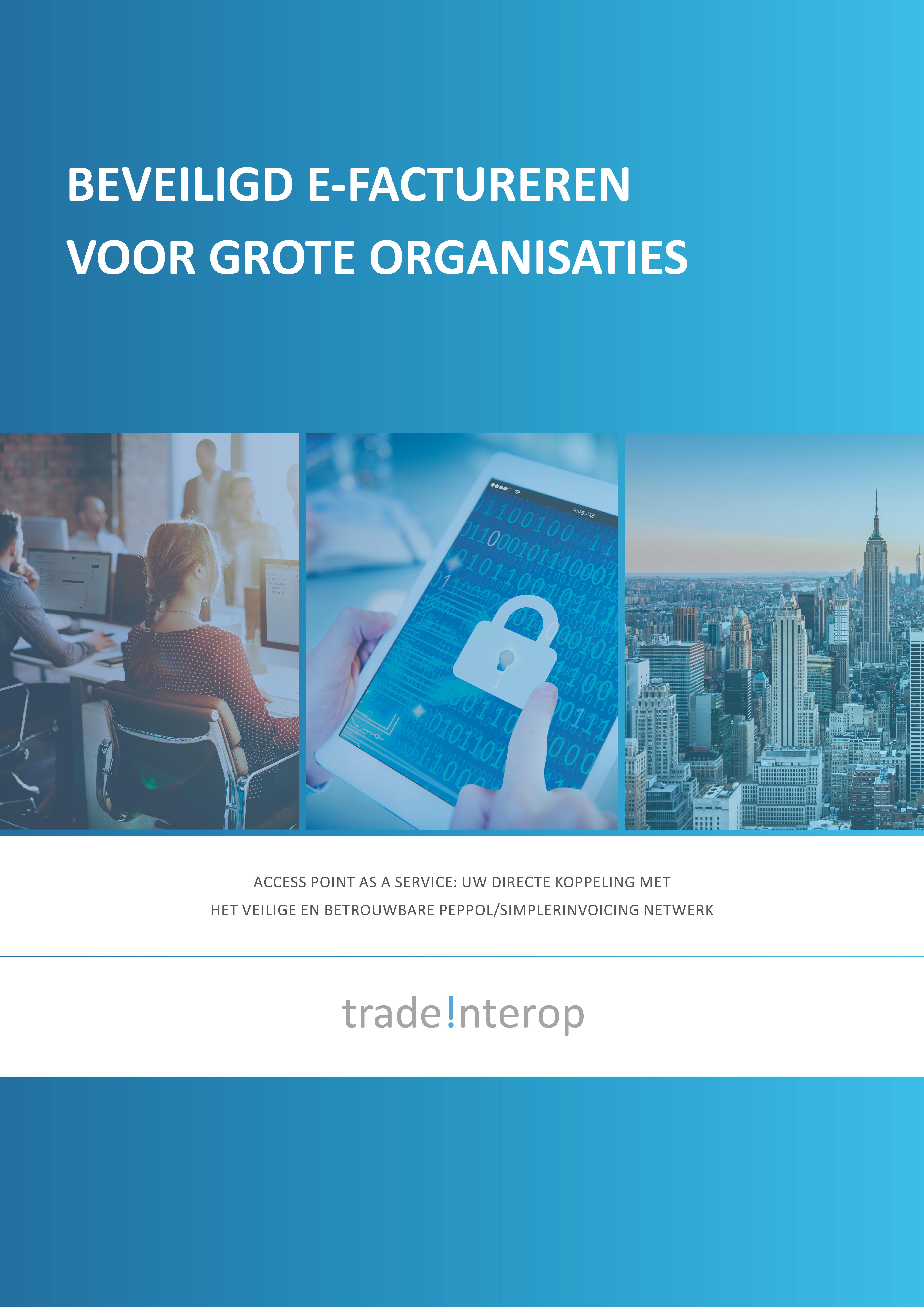 Whitepaper: Beveiligd e-factureren voor grote organisaties